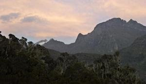The Rwenzori mountain range on the border between Uganda…