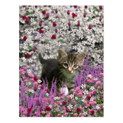 Emma in Flowers I – Little Gray Kitty Cat Post Cards