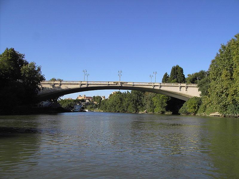 File:Tevere - PonteRisorgimento1.JPG