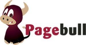 Le site du jour : Pagebull, un nouveau moteur de recherche tout en images