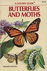 Butterflies And Moths Golden Field Guide