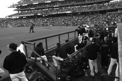 SF Giants - Dugout