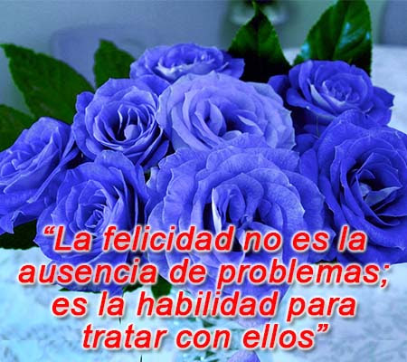 Imagenes De Rosas Azules Con Frases Rosas De Amor