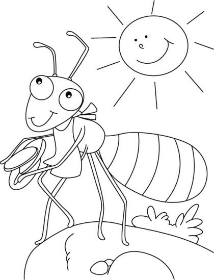 grasshopper and ant coloring pages - photo#42