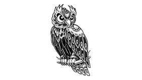 Significado Tatuaje Buho Lechuza Mochuelo Aves Nocturnas 1