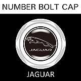 【JAGUAR】【ナンバープレート用】ジャガー ナンバーボルトキャップ NUMBER BOLT CAP 3個入りセット タイプ1 ブラガ