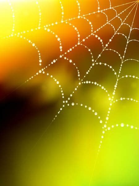 Spider web free vector download (4,759 Free vector) for