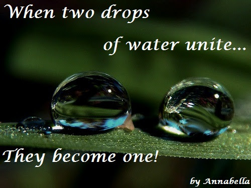 When Two Drops Of Water Unitethey Become One Quotespicturescom
