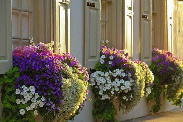 AD-Spectacular-Balcony-Garden-16