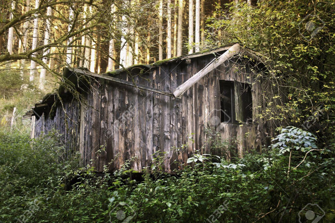 Resultado de imagen para cabaña en el bosque vieja