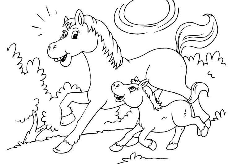 ausmalbilder für kinder pferde  malvorlagen