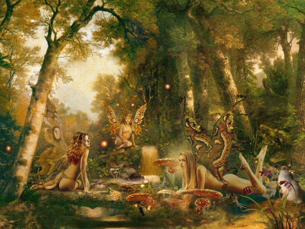 Fantasy Fairy Wallpaper