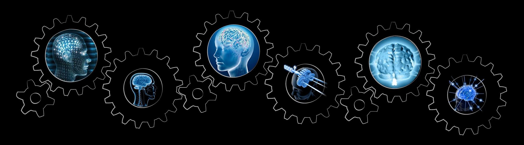 IMAGEM: Várias engrenagens, de tamanhos diferentes, com reproduções em 3D de diferentes ângulos do cérebro humano