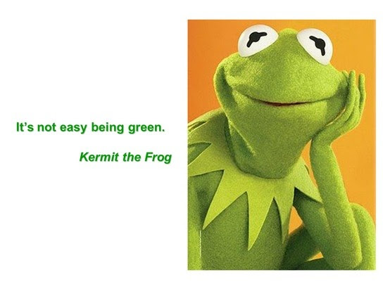 Kurmet The Frog Famous Quotes Wwwpicswecom