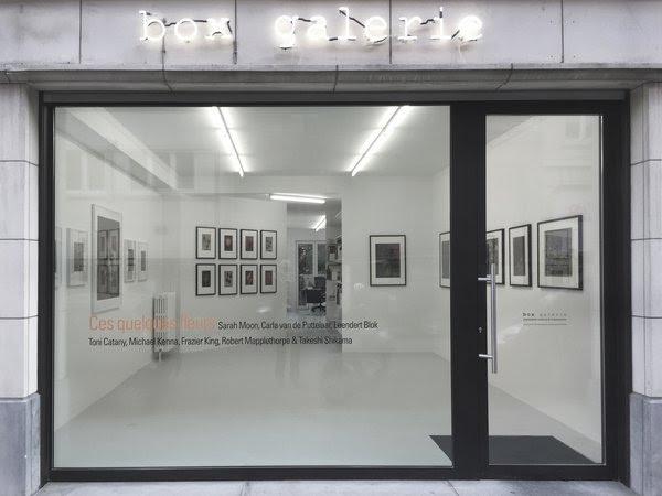 Box Galerie