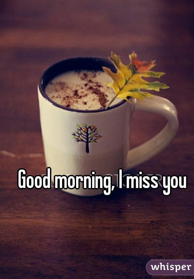 Good Morning I Miss You