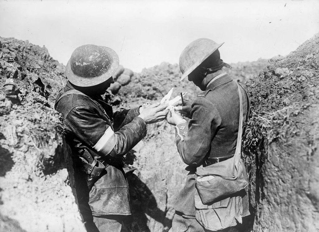 Os animais também lutaram na Primeira Guerra Mundial 18