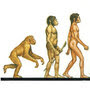 Ascent of Man Illustration
