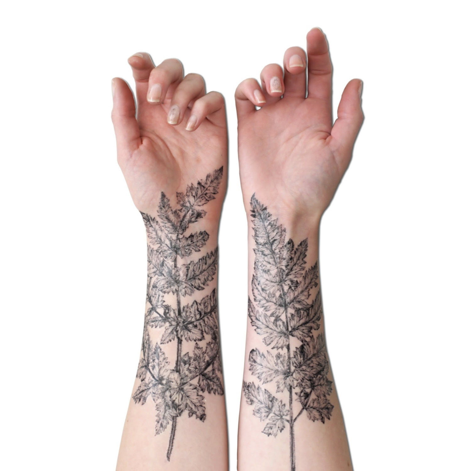 NATURE GIRL From the Forest Fern & Crystal Temporary Tattoo Kit - VictoriasAviary