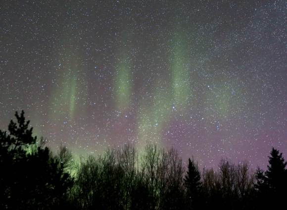 Like paw prints made by a cat, pale green auroral rays mark the northern sky around 5:45 a.m this morning March 17. Credit: Bob King