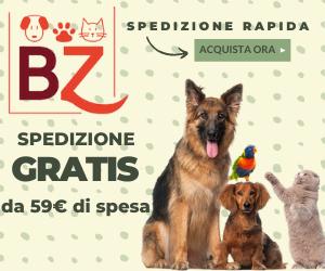 Su Bauzaar.it troverai oltre 3.000 prodotti per il tuo cane. Scopri il tuo nuovo negozio di quartiere
