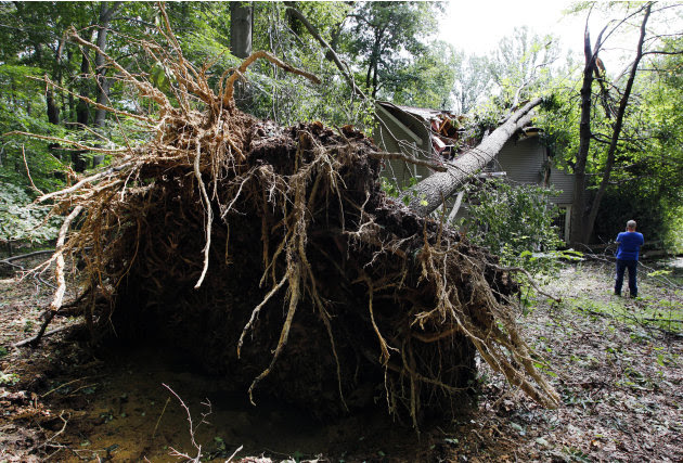 A worker stands near a tree that fell onto a house during high winds caused by Hurricane Irene in Port Deposit, Md., Monday, Aug. 29, 2011. (AP Photo/Patrick Semansky)