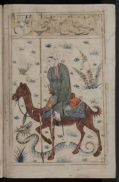 man on camel and dragon snake