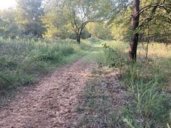 Popular Horse Trail