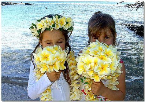 1000  ideas about Hawaiian Hair on Pinterest   Hawaiian