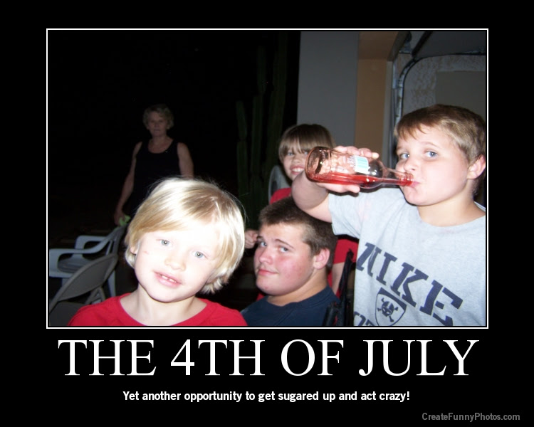 Fourth Of July Fireworks Funny Quotes Quotes