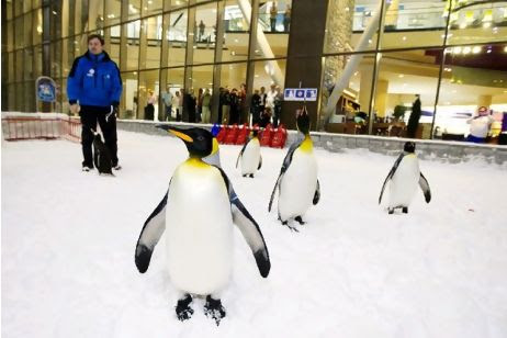 Snow Penguins at Ski Dubai Map,Dubai Tourists Destinations and Attractions,Things to Do in Dubai,Map of Snow Penguins at Ski Dubai,Snow Penguins at Ski Dubai accommodation destinations attractions hotels map reviews photos pictures