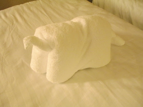 Not sure what towel animal this is...