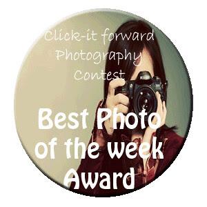 Button Award45