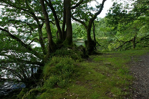 Path along Windermere