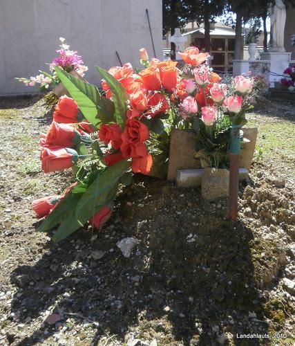 Flores del corazón