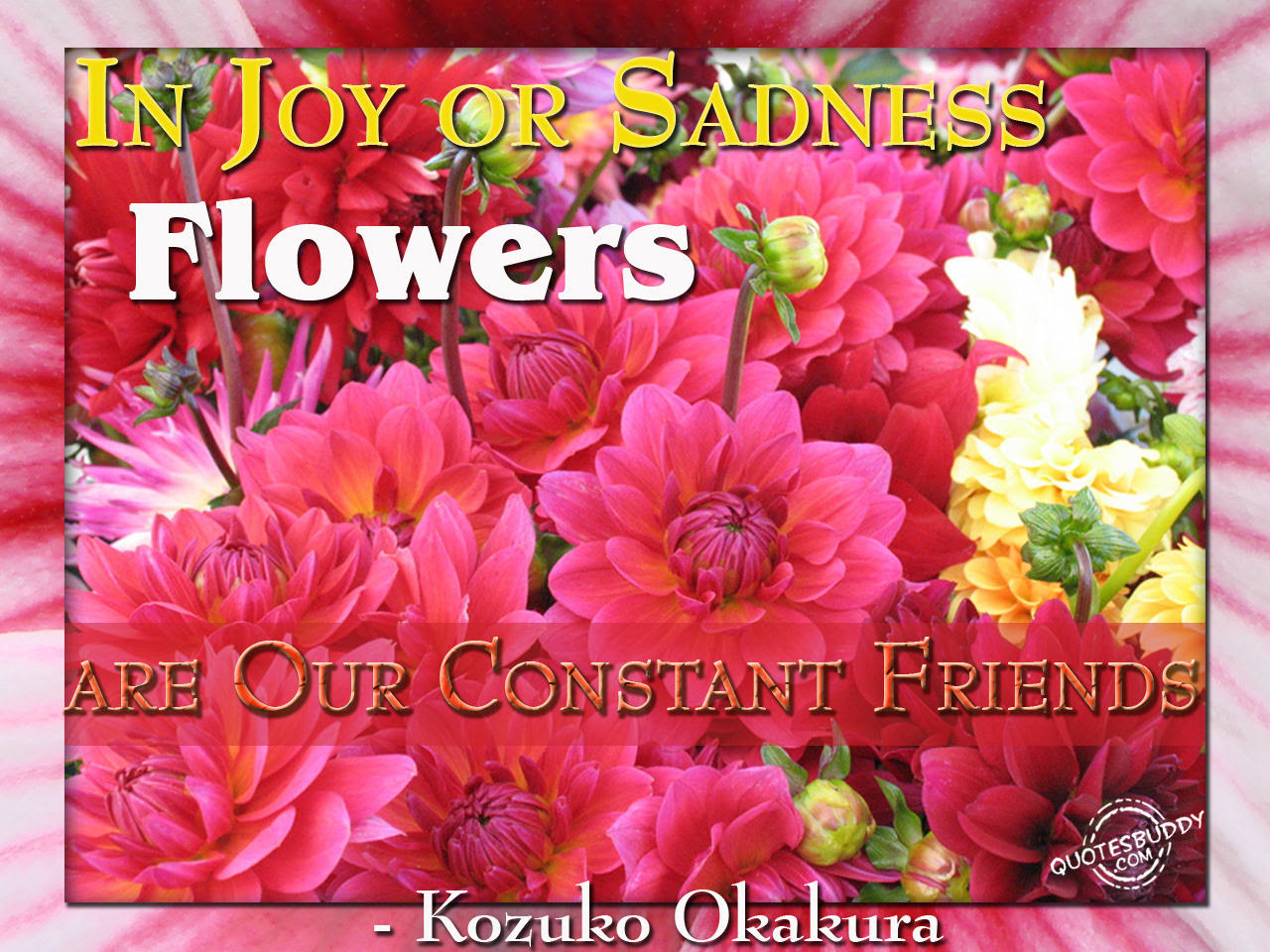 Flower Quotes About Friendship Quotesgram 100 Quotes