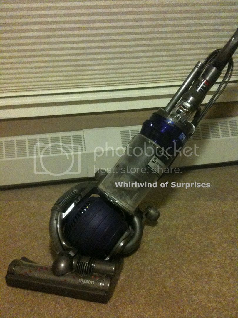Dyson DC25 Animal Vacuum Review