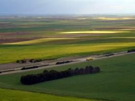 Impulso al debate legislativo de la tenencia extranjera de tierras
