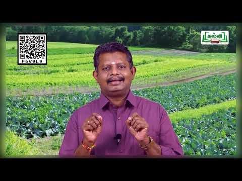 8th Science பயிர் பெருக்கம் மற்றும் மேலாண்மை இயல் 21 பகுதி 3  TM  Kalvi TV