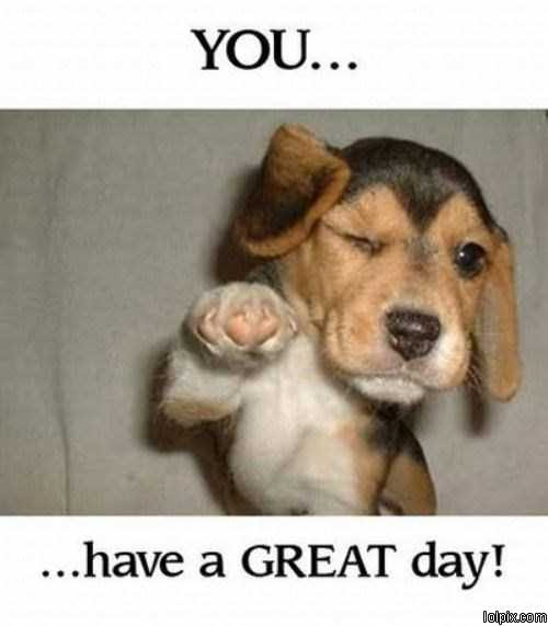 Free Have A Great Day Images Download Free Clip Art Free Clip Art