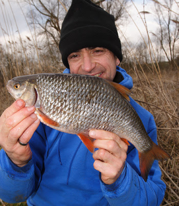 A 3lb plus Avon roach - will they be there for future generations?