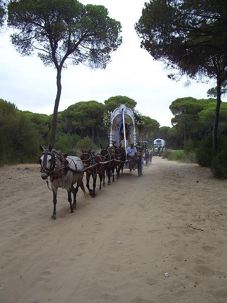 Archivo:Simpecado cruzando el Coto de Doñana, camino de vuelta de El Rocío IMGP3432.JPG