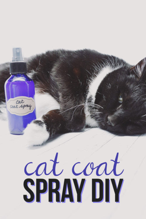 DIY Cat Coat Spray - Hello Nature - HMLP 88 - Feature