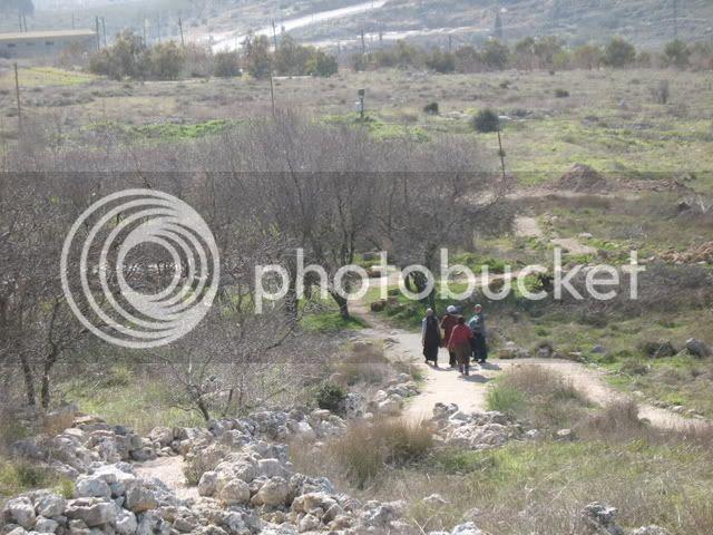 Tel Shiloh 2