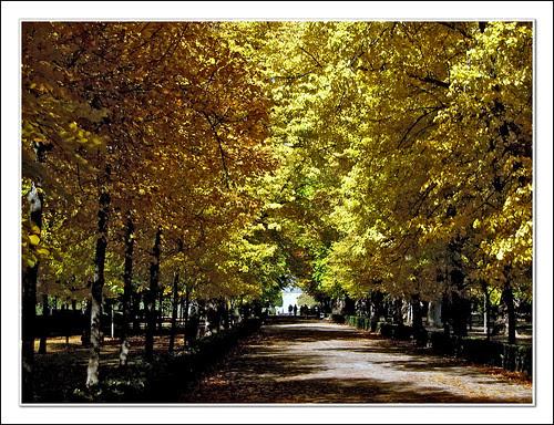 jardines del príncipe de aranjuez