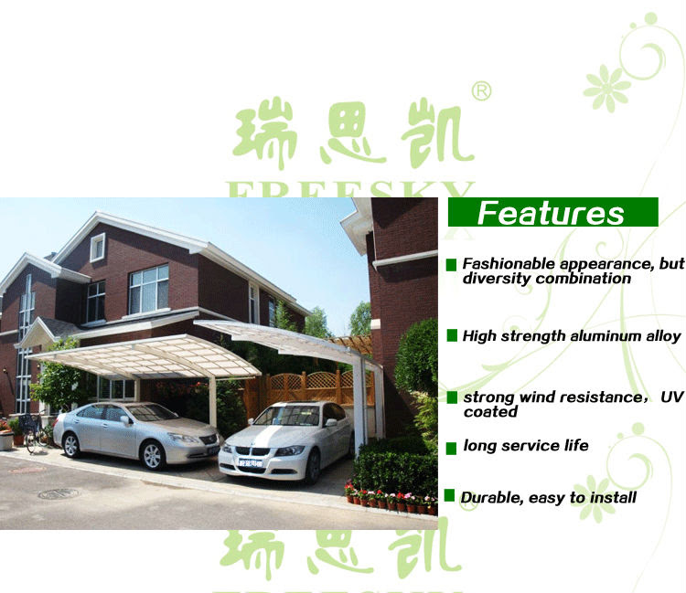 Canopies: Driveway Canopy