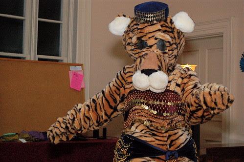 Belly dancing tiger