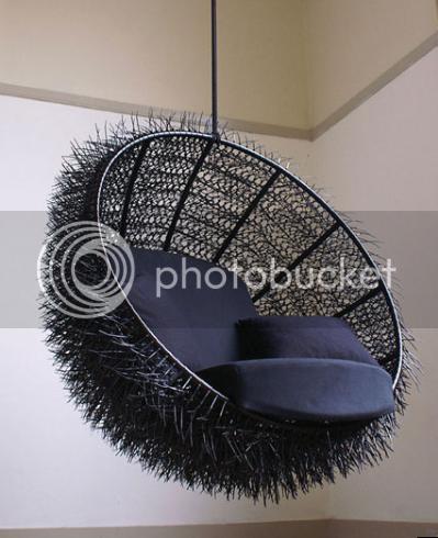 Sea-Urchin 1