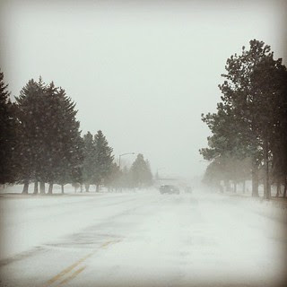 Day57 miserable outside today! Driving not fun! 2.26.13 #jessie365