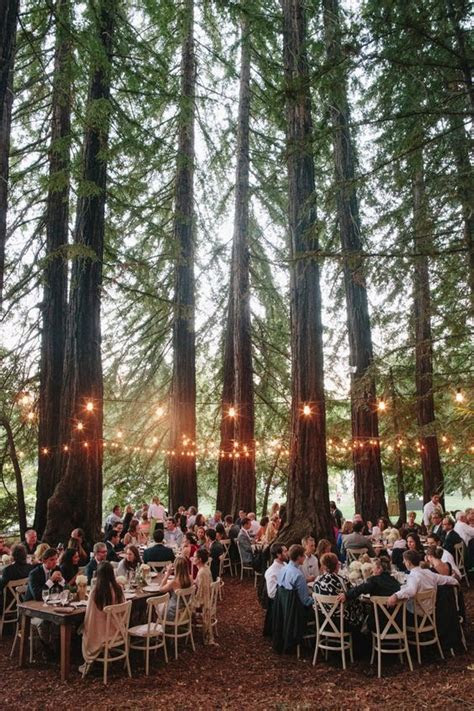 Magical Forest Wedding Decoration Ideas ? WeddCeremony.Com
